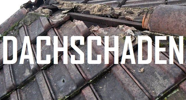 Dachschaden - Logo