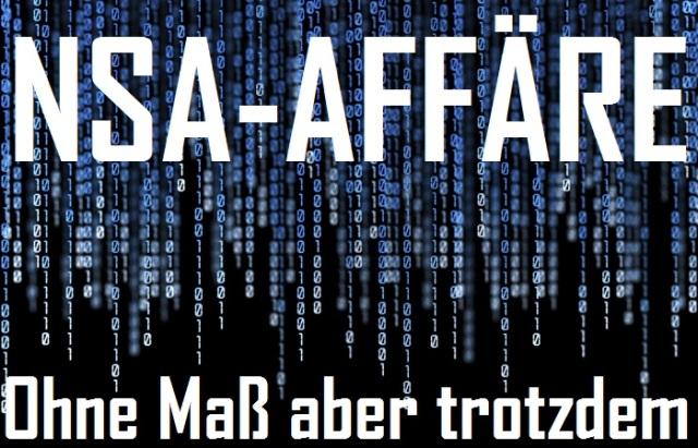 NSA - Ohne Maß aber trotzdem - Cover