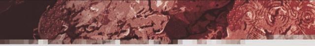 SR5 - Grafikfüller - Parabotanik